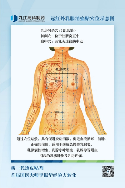 乳腺穴位图400.jpg