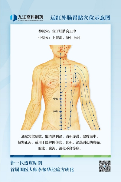 肠胃穴位图800.jpg